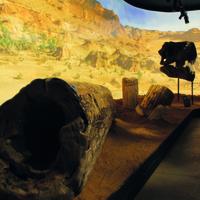 GEO MUSEU: pedras preciosas e fósseis pré-históricos na Serra Gaúcha